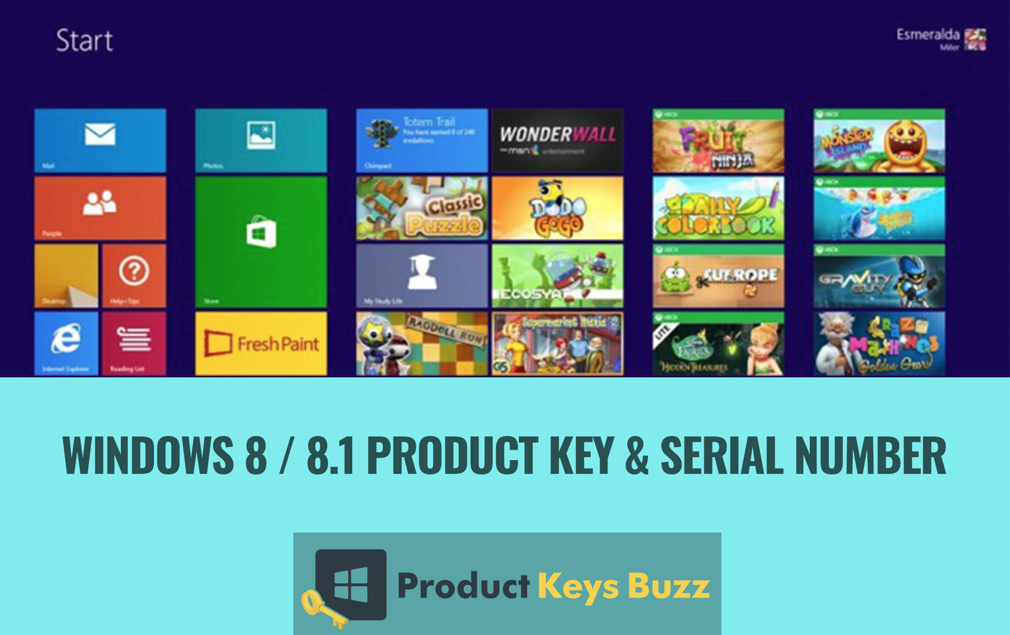 Windows 8.1 Product Key & Serial Number