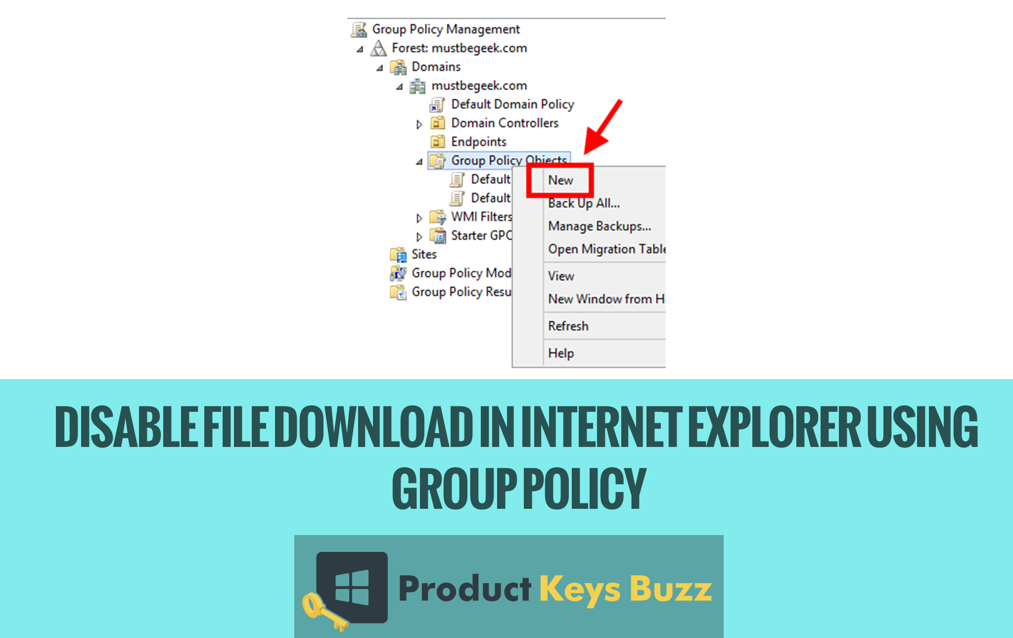 Disable File Download in Internet Explorer using Group Policy